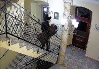 Dwie kradzieże w Książęcym Pałacu we Wleniu